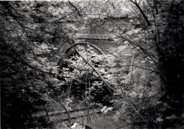 A view through the trees towards the north portal of Barnstone Tunnel, a comparatively short structure situated south of East Leake that brought the London Extension under Rempstone Road, Loughborough.