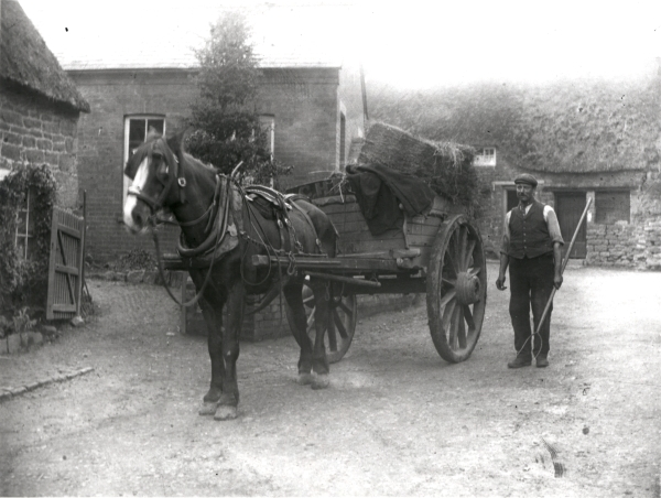 A typical horse and cart of the time